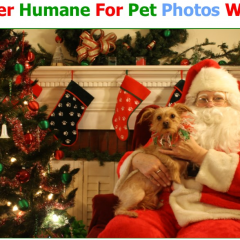 Pet Photos with Santa 2017
