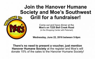 Moe's Fundraiser with Hanover Humane Society