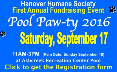 First Annual Pool Paw-ty 2016